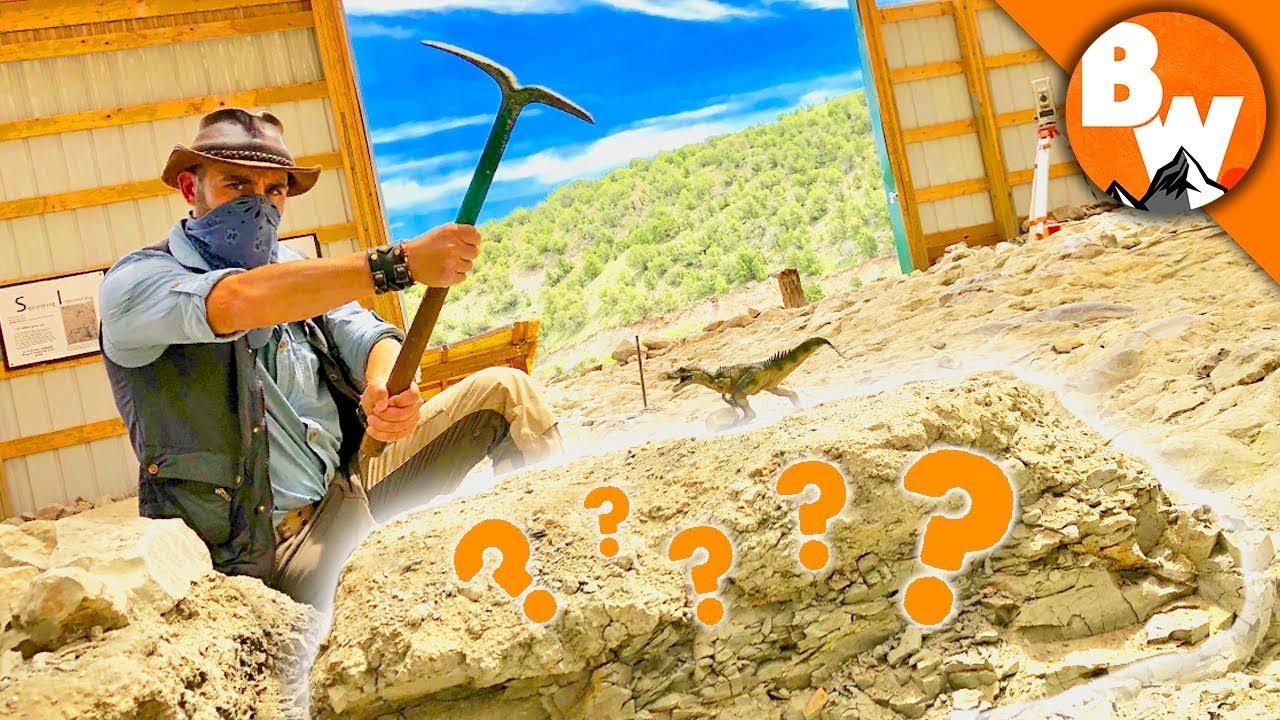 Digging Up Jurassic Treasure!
