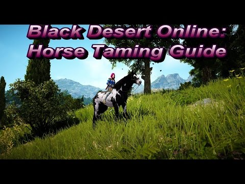 BDO: Horse Taming Guide - Locations