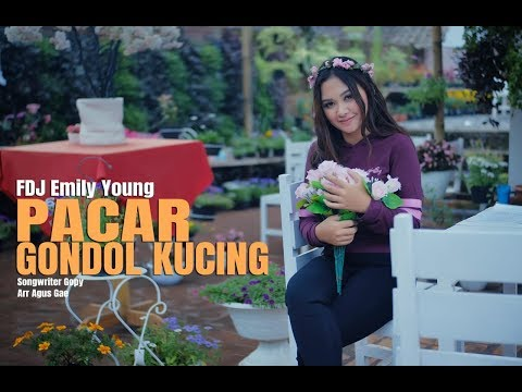 FDJ Emily Young Pacar Gondol Kucing