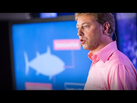The case for fish farming   Mike Velings