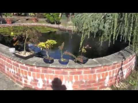 5500 Gallon Koi Pond Filter - System Explained