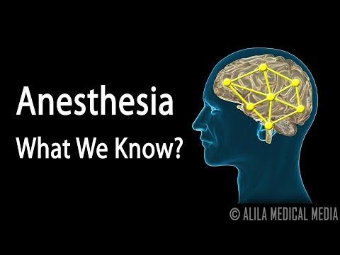 Neuroscience Basics: Anesthesia, How it Works, Animation.