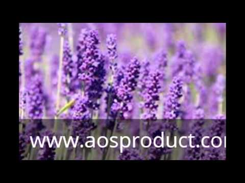 Organic Essential oils suppliers in India | AOS bulk Exporter Ghaziabad