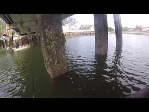 Greg & Woody Tear the Fish Up Hilton Head, SC