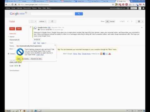 Make Internet Phone Calls using Google Voice