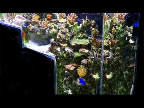 Part 1: DIY Floating Dropoff aquarium build