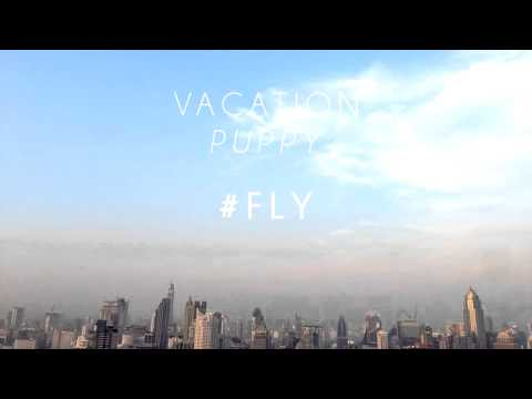 Vacation Puppy - Fly
