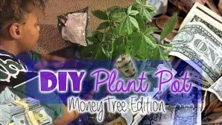 Diy Plant Pot My Money Tree Pachira Aquatica