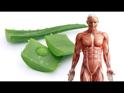 What Happens to Your Body When You Consume Raw Aloe Vera Juice ?