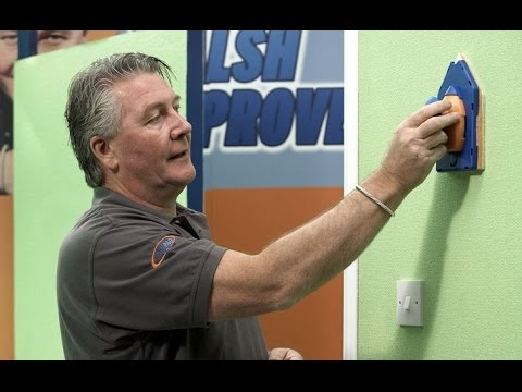 Tommy Walsh demonstrates the Paint Pad Pro