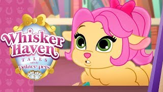 Sheep Trick | Whisker Haven Tales with the Palace Pets | Disney Junior