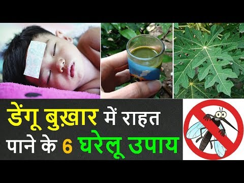 Dengue Fever Ayurvedic Treatment in Hindi : Top 6 Home Remedies