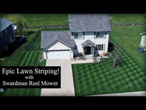 Epic Lawn Striping! - Swardman Edwin 2.0 Reel Mower Mowing