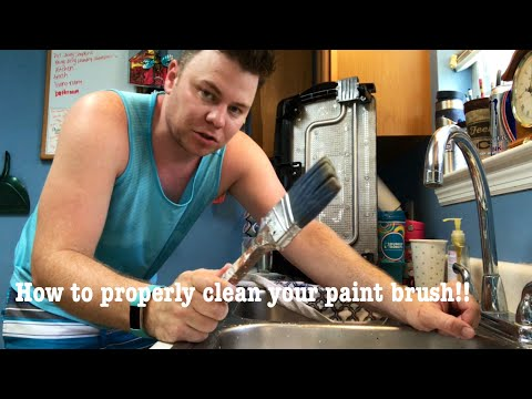HOW TO PROPERLY CLEAN YOUR PAINT BRUSHES FOR REUSE | THE SHOWSTOPPER SHOWS