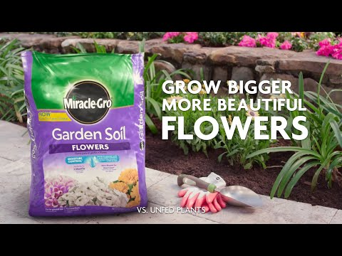 How to Use Miracle-Gro® Garden Soil for Flowers for In-Ground Gardening