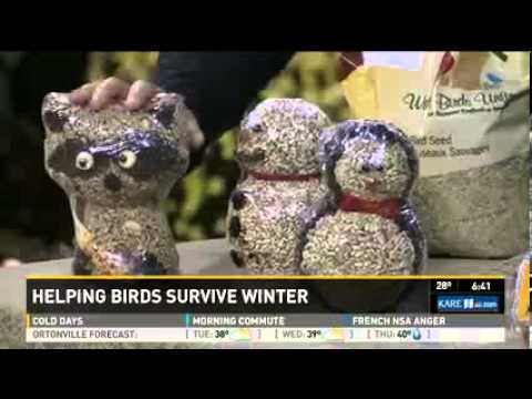 Help the Birds Survive the Winter Months with Three Essential Elements