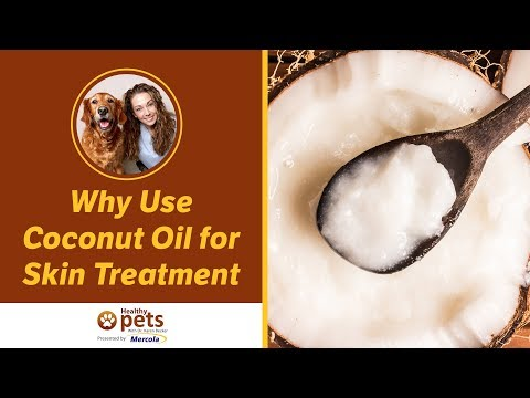 Dr. Becker: Why Use Coconut Oil for Skin Treatment