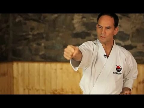 How to Do a Basic Punch | Karate Lessons