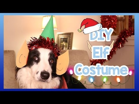 DIY Christmas Santa Elf Costume for Dogs! How to Make an Easy Homemade Elf Costume for Your Dog!
