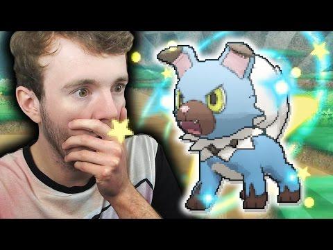 EPIC SHINY ROCKRUFF LIVE REACTION - AMBUSHED! - Pokemon Sun & Moon