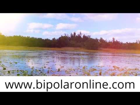 BEST JOBS FOR BIPOLAR AND DEPRESSED INDIVIDUALS BLAKE LEVINE