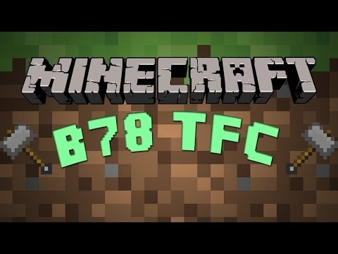 Guide to TerraFirmaCraft #3 [Iron and Bronze]
