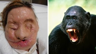 Pet Animals That Ate Their Owner