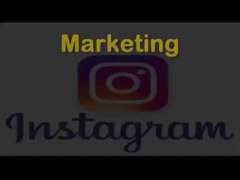 Instagram Marketing Specialist Jacksonville Fl