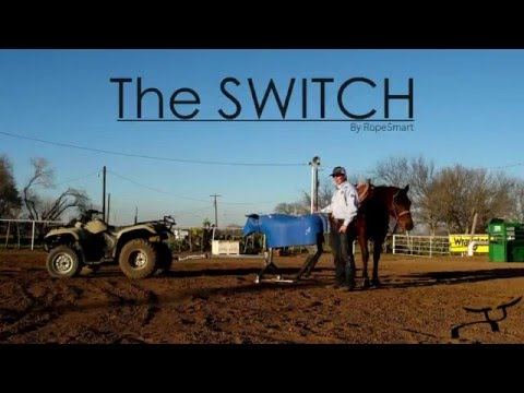 Roping the Switch Sled