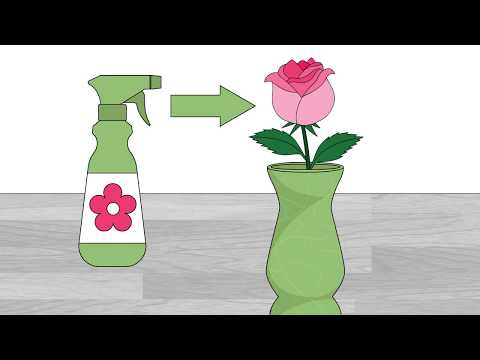 How to Extend the Life of Cut Roses