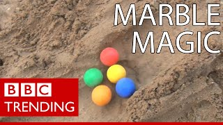 The marble racing craze that