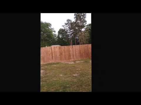 Boxer jumping a 6 ft fence