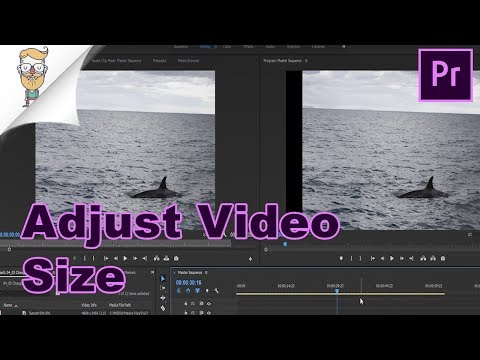 How To Change Video Size In Premiere Pro