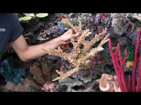 Custom Saltwater Aquarium Artificial Reef Insert