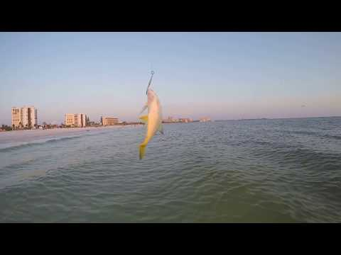Beach Fishing For Spanish Mackerel Catching Jacks Lizard Lady Fish