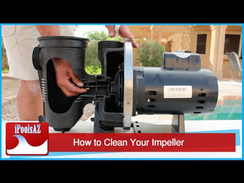 Swimming Pool Service Tip: Unclogging Your Impeller