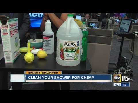 Clean your shower for less