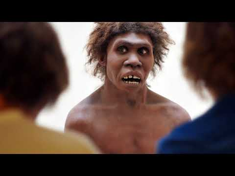 Why You're SECRETLY a NEANDERTHAL!