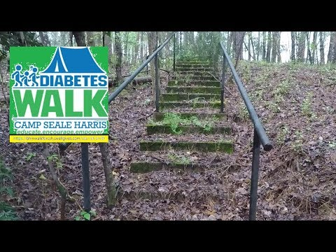 Metal Detecting Abandoned Playground & Diabetes Walk Camp Seale Harris