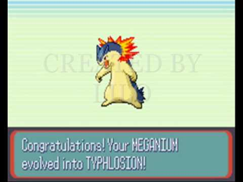 What? Tropius is evolving, to Meganium and Typhlosion!!