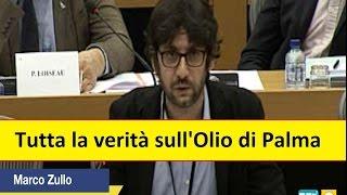 Marco Zullo M5S Europa: #Oliodipalma insostenibile per salute e ambiente