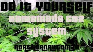 Diy Homemade Co2 System For Indoor Marijuana Plants Easy