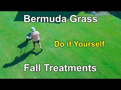 Bermuda Grass Fall Treatments and Care