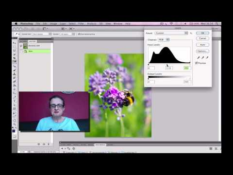 BSL Photoshop how to change from RAW to JPEG