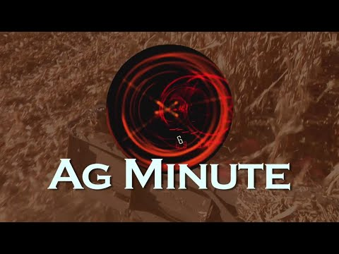 Ag Minute #900 Plant Tissue Analysis (Air Date 5-20-18)