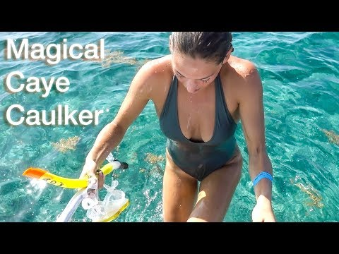 Can You Belize It? | Another Break From VAN LIFE | Travel Belize