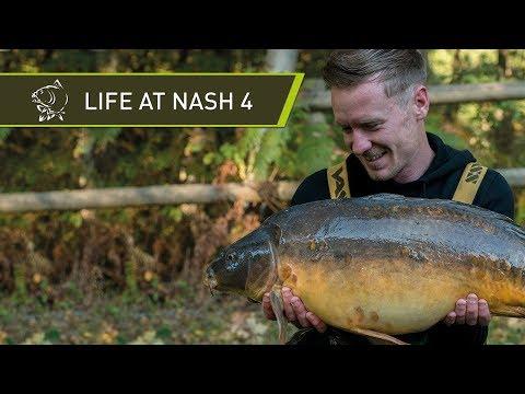 LIFE AT NASH 4 - CARP FISHING BEHIND THE SCENES