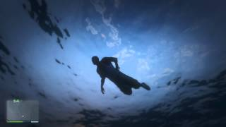 GTA V : Near-Death Whale-Watching Experience