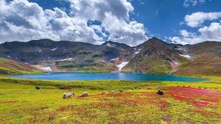 DEOSAI National park,PAKISTAN (The last sanctuary and heavenly beautiful area of Northern Pakistan )