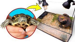 Ein neues selbst gebautes Zuhause für unsere zwei süßen Schildkröten